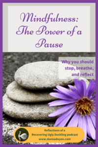 mindfulness-pause-reflect