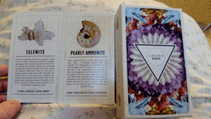 Lavish Earth - Selenite and Pearly Ammonite