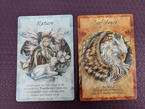 Donna Doyon - Meditation Guides - Magical Times oracle deck