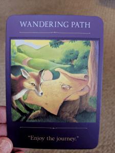 Donna Doyon - Wandering Path